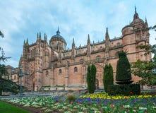 Catedral nova (Catedral Nueva) em Salamanca, Espanha Imagens de Stock Royalty Free