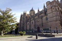 Catedral Nueva. Salamanca Arkivfoto