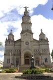 Catedral Ouro Fino foto de archivo