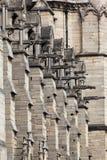 Catedral París de Notre Dame de los Gargoyles Fotos de archivo libres de regalías