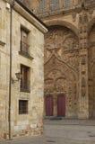 Catedral Salamanca, Castilla y Leon Zdjęcie Stock