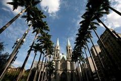 Catedral Sao Paulo del SE fotos de archivo libres de regalías