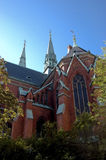 Catedral sueco Imagem de Stock