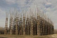 Catedral vegetal de Lodi, Italia Foto de archivo libre de regalías