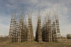 Catedral vegetal de Lodi, Italia Imagen de archivo