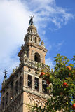 Catedral y La Giralda, Sevilla Foto de archivo libre de regalías