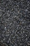 Categoria da ervilha de carvão marrom Foto de Stock Royalty Free
