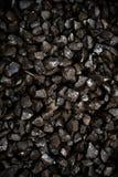 Categoria da ervilha de carvão marrom Fotos de Stock Royalty Free