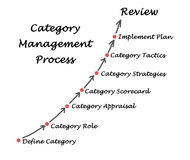 Category Management. Presenting diagram of Category Management process vector illustration
