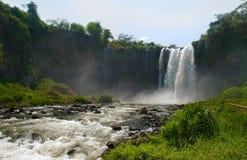 catemaco墨西哥韦拉克鲁斯瀑布 库存图片