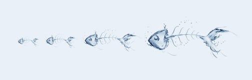 Catena del Fishbone dell'acqua Immagini Stock Libere da Diritti