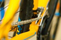 Catena della bicicletta nella tensione Fotografia Stock