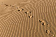 Catena delle orme scalze sulla sabbia Orme umane sul fondo della sabbia Allontanarsi di punti del piede Immagini Stock Libere da Diritti