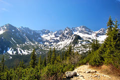 Catena di Orla Perc in montagne polacche di Tatra Immagine Stock Libera da Diritti