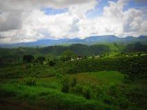 Catena montuosa con le nuvole nel cielo nel viaggio di Nuwara Eliya Sri Lanka Fotografie Stock