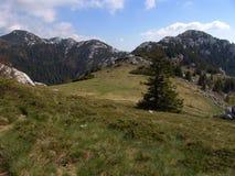 Catena montuosa Croazia di Velebit Fotografie Stock