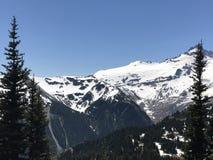 Catena montuosa del monte Rainier fotografia stock