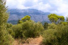 Catena montuosa di Biokovo Fotografia Stock Libera da Diritti