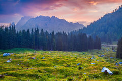 Catena montuosa di Cresta di Enghe alla mattina nebbiosa di estate Fotografia Stock