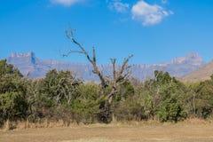 Catena montuosa di Drakensberg Fotografia Stock Libera da Diritti