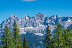 Catena montuosa di Hohe Dachstein in Austria con gli alberi verdi in Immagine Stock Libera da Diritti