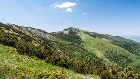 Catena montuosa di Mala Fatra con il più alta collina di Velky Krivan in Slovacchia Fotografia Stock