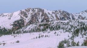 Catena montuosa di Snowy con i pini verdi all'itinerario alpino di Tateyama Immagine Stock
