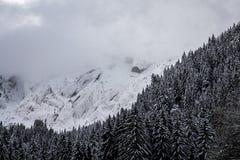 Catena montuosa di Snowy con le nuvole e una foresta Fotografia Stock Libera da Diritti