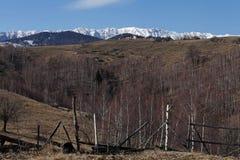 Catena montuosa e foresta Immagini Stock Libere da Diritti