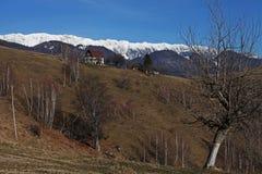 Catena montuosa e foresta Immagine Stock