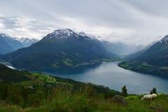 Catena montuosa idilliaca con un lago puro del fiordo, in Norvegia Immagini Stock