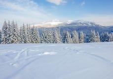 Catena montuosa nei Carpathians nell'inverno Fotografia Stock