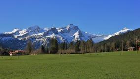 Catena montuosa ricoperta neve e prato verde Immagine Stock