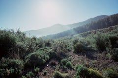 Catena montuosa vulcanica 3 Fotografia Stock