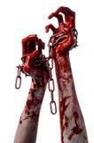 Catena sanguinosa della tenuta della mano, catena sanguinosa, tema di Halloween, fondo bianco, isolato Immagini Stock Libere da Diritti