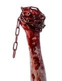 Catena sanguinosa della tenuta della mano, catena sanguinosa, tema di Halloween, fondo bianco, isolato Immagine Stock