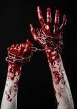 Catena sanguinosa della tenuta della mano, catena sanguinosa, tema di Halloween, fondo nero, isolato Immagini Stock Libere da Diritti
