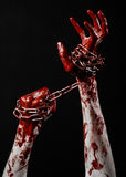 Catena sanguinosa della tenuta della mano, catena sanguinosa, tema di Halloween, fondo nero, isolato Fotografia Stock
