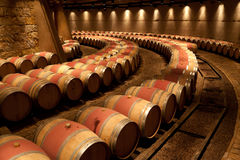 Catena Zapata Vineyard Mendoza Argentina. The vineyard storage with its oak barrels Stock Photos