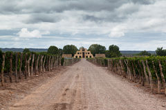 Catena Zapata Vineyard Mendoza Argentina Stock Photography