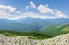 Catene montuose coperte di foreste attillate in Mounta carpatico Immagine Stock