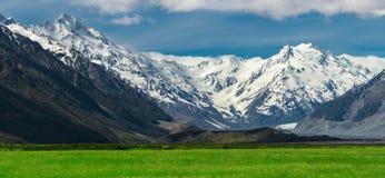 Catene montuose e paesaggio del campo di erba verde Immagini Stock Libere da Diritti