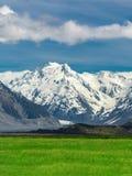 Catene montuose e paesaggio del campo di erba verde Immagine Stock