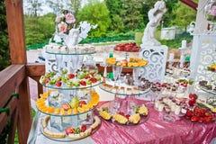 Catered stołowy pełny różne przekąski i owoc Ślubny banqu Fotografia Royalty Free