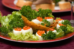 Catering - caviar appetizer 2. Catering - caviar appetizer in eggs beautifully decorated Royalty Free Stock Photos