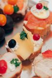 Catering food. Luxury food on wedding table. Catering Royalty Free Stock Images