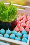 Catering food on plate Royalty Free Stock Photo
