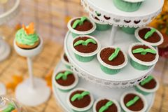 Catering food. At a wedding party,indoor wedding scene Stock Photo