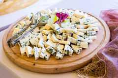 Catering food. For wedding on the table Royalty Free Stock Images