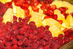 Catering with fruits, ananas, raspberries and strawberries royalty free stock photography